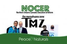 The Mernahuana Zone