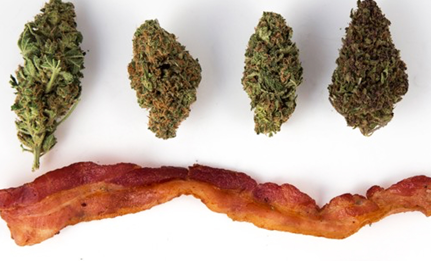buds and bacon
