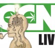 cannabis-culture-news-live-marijuana-and-creativity