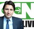 cannabis-culture-news-live-trudeau
