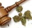regulation-marijuana