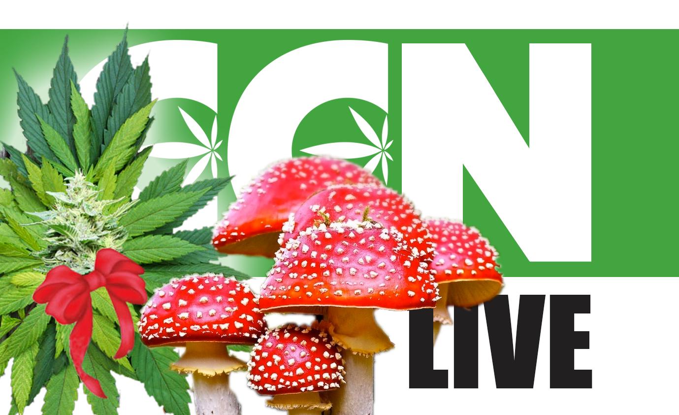 CCN LIVE: Pothead Jesus & Mushroom Santa