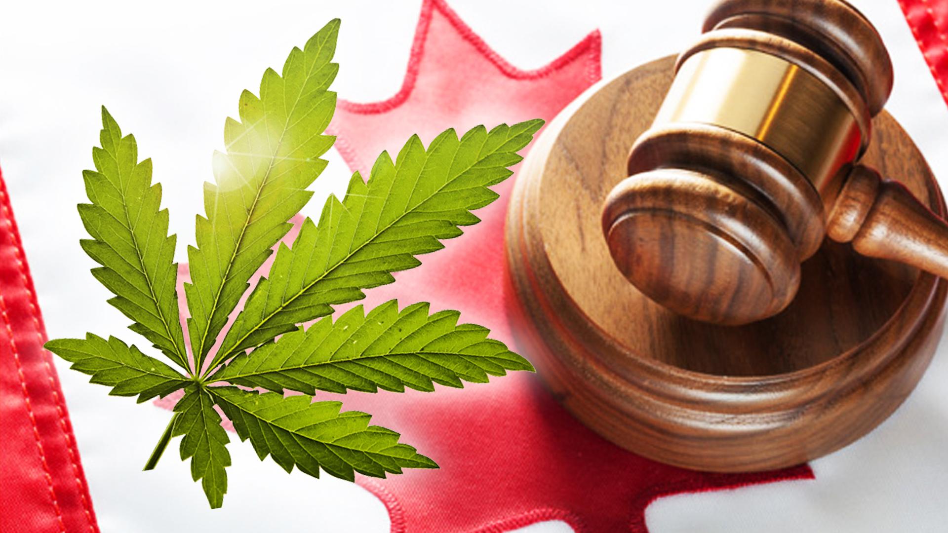 marijuana-laws-canada