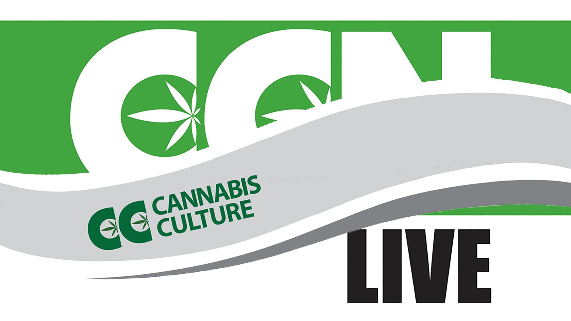 ccn-live-port-coquitlam-marijuana