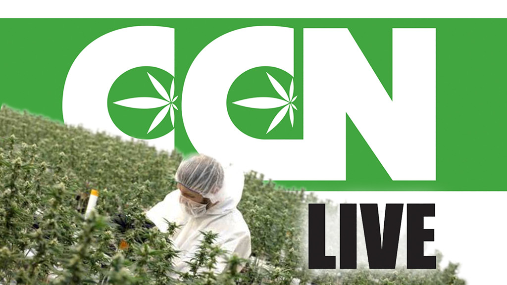 ccn-live-marijuana-task-farce