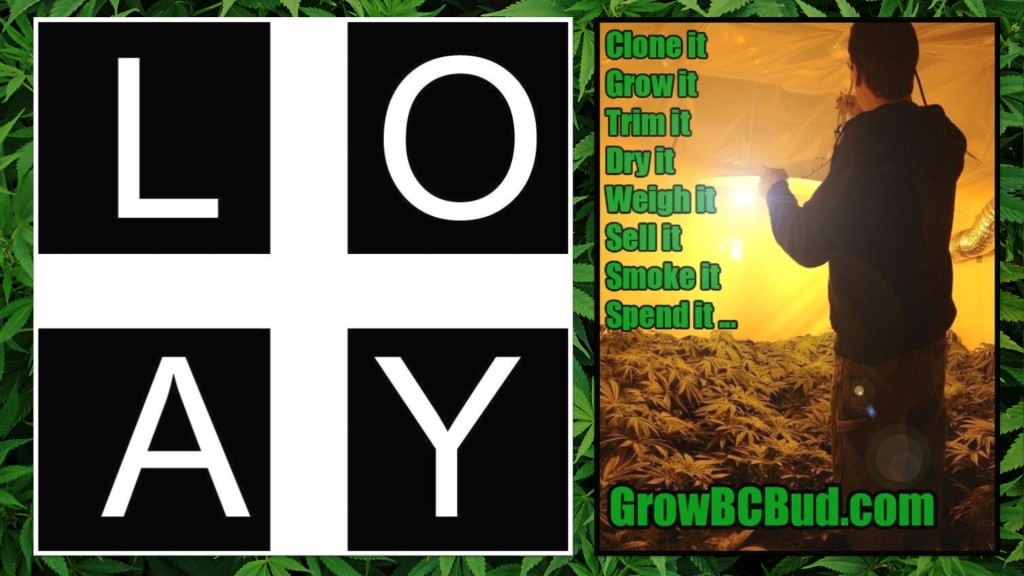 "Expert Joints LIVE! - ""Loyal To The Loud"" Loyal'T' GrowBCBud.com Mr. Green"