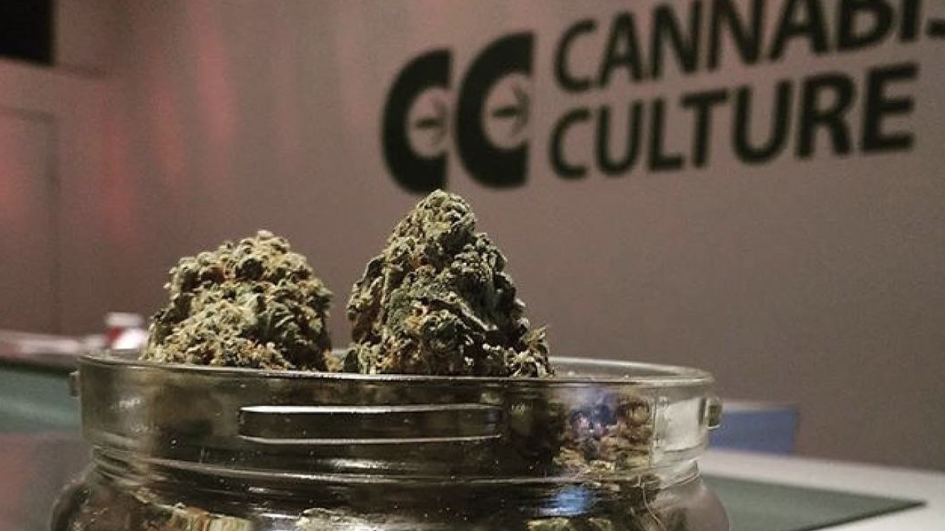 cannabis culture weed