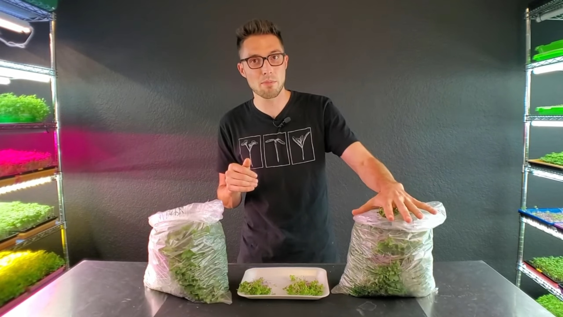 Bamboo VS Hemp Microgreen Mats